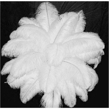 Zimtown 10 PCS Wholesale Quality Natural OSTRICH FEATHERS