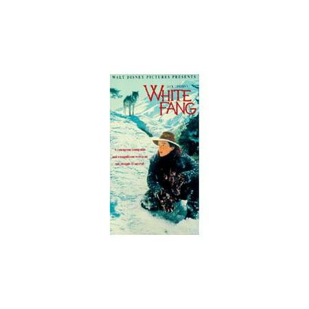OOP Rare HTF vhs -- WHITE FANG -- Ethan Hawke - JACK LONDON