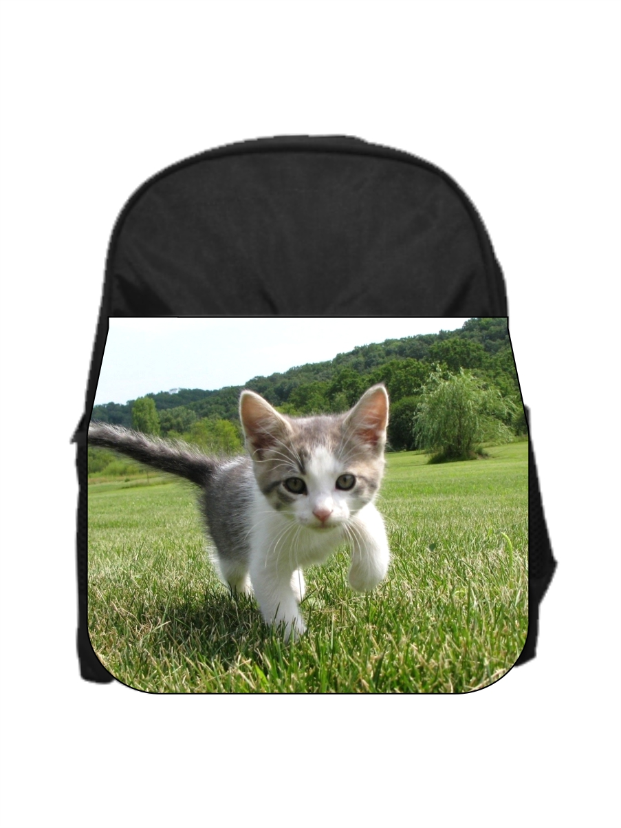 Kitten Girls Blue Preschool Toddler Kids Backpack /& Lunch Box Set