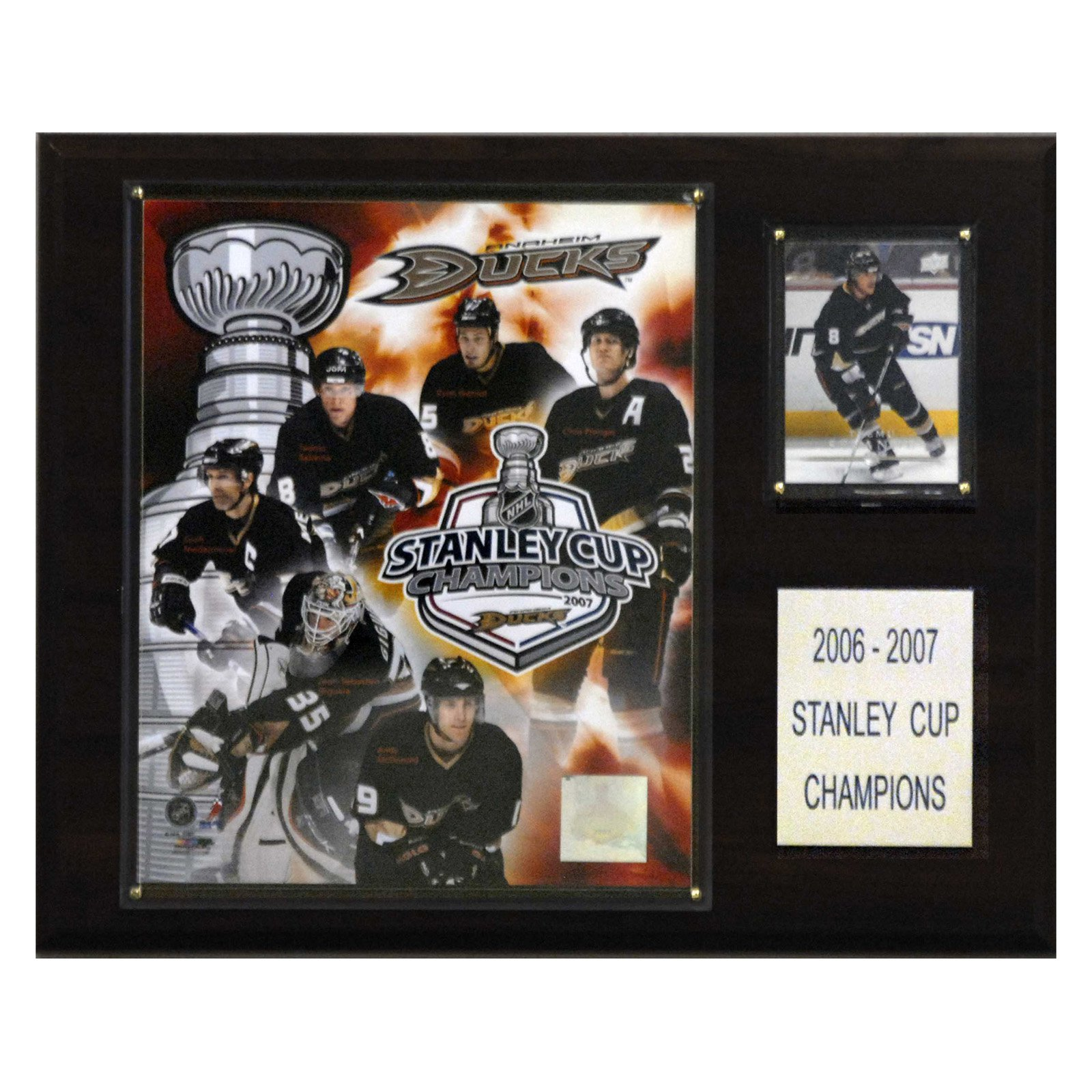 C&I Collectables NHL 12x15 Anaheim Ducks 2007 Stanley Cup Champions Plaque