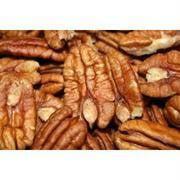 Nuts BG16646 Nuts Shelled Pecans Usa - 1x5LB