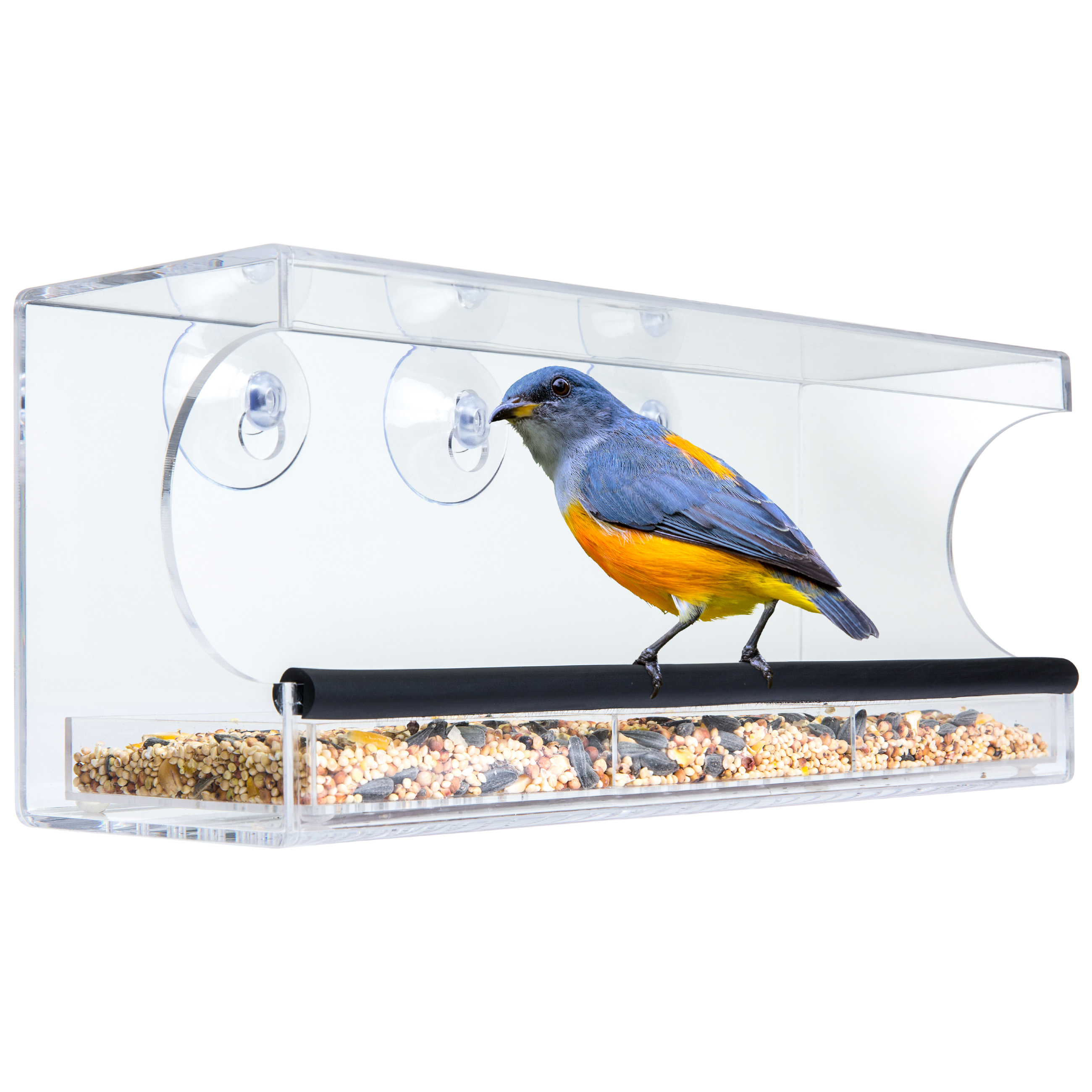 Best Choice Products Extra Wide Acrylic Window Bird Feeder w/ Padded Perch, Drain Holes, & Removable Tray - Clear