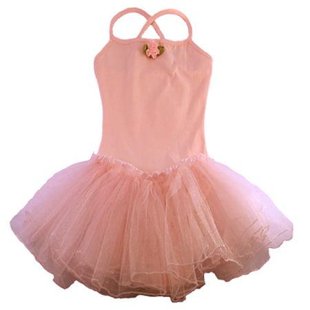 Reflectionz Pink Rosette Tutu Leotard Dance Dress Toddler Girl 2T-8](Toddler Leopard Dress)