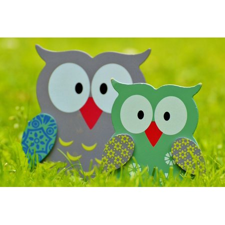 LAMINATED POSTER Bird Fig Wood Deco Decoration Owls Cute Color Poster 24x36 Decal