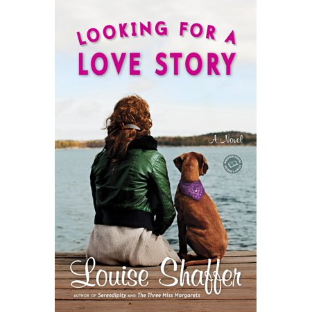 Looking for a Love Story : A Novel