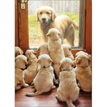 Avanti Press Golden Mom At Door Funny / Humorous Dog Mother's Day Card
