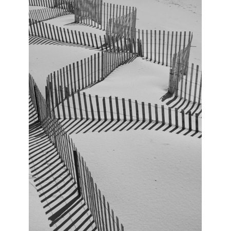 New York, Long Island, the Hamptons, Westhampton Beach, Beach Erosion Fence, USA Coastal Black and White Sand Dune Photo Print Wall Art By Walter
