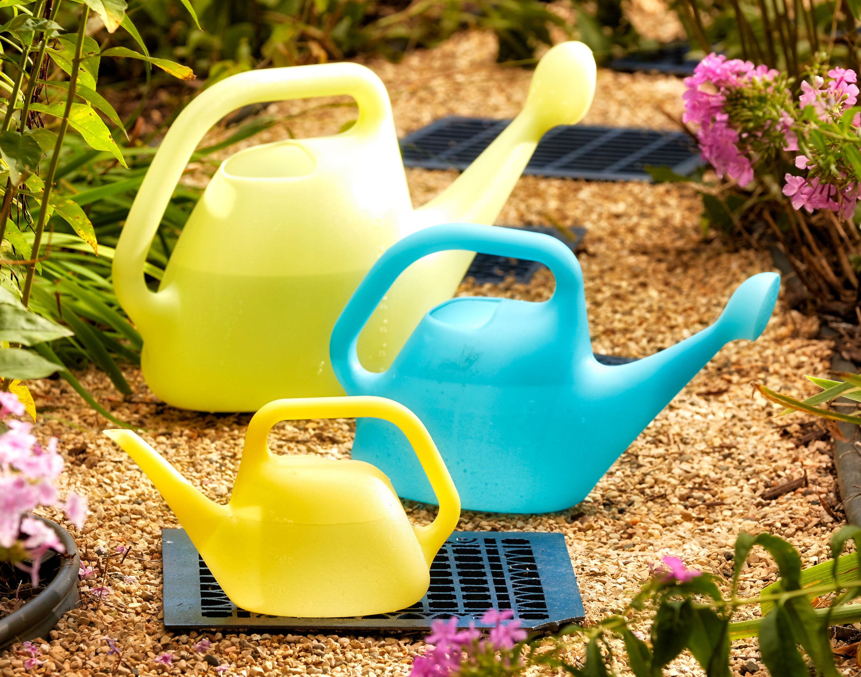 Bloem Watering Can 1 Gallon Bluebonnet by Bloem