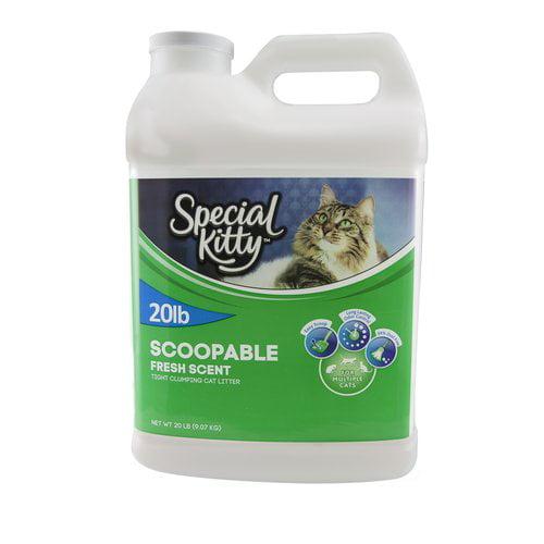 fresh news cat litter where to buy