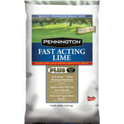 Pennington Fast Acting Lime Plus AST Soil Conditioner, 6 lbs