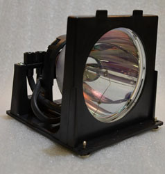 Replacement for EREPLACEMENTS 915P020010-ER LAMP and HOUSING
