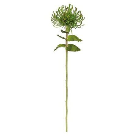 Northlight Seasonal Artificial Pin Cushion Protea Decorative Floral Crafting Stem