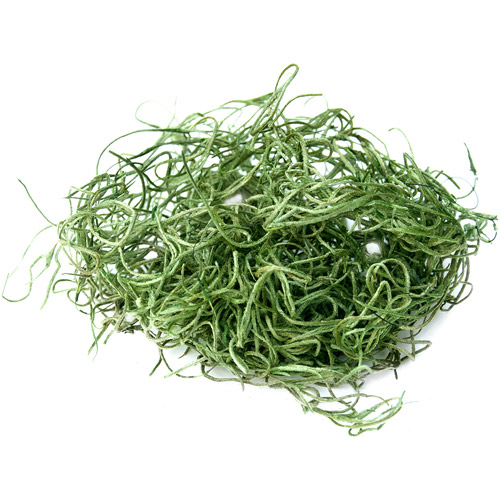 Super Moss 26912 8 Oz Spanish Moss Preserved