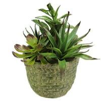Northlight Seasonal Decorative Artificial Mixed Succulent Arrangement Desk Top Plant in Pot