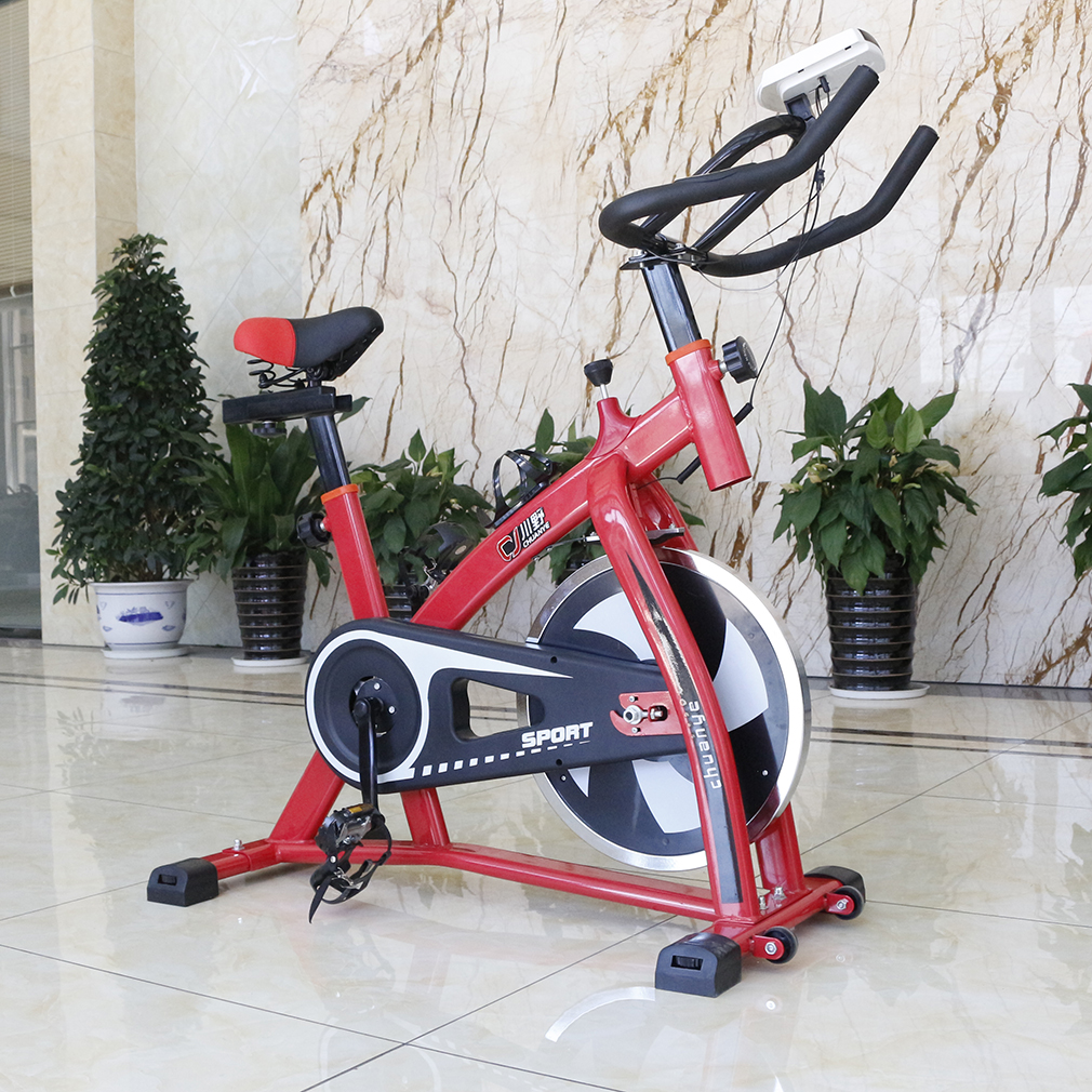 2018 Exercise Bike Professional S300 Exercise Bike Fitness Cycling Machine Cardio Aerobic Equipment Workout Gym Training Stationary for Indoor Exercise, Red