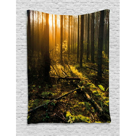 Nature Tapestry, Misty Morning in the Forest with Sun Rays Mother Earth Foliage Dawn Picture, Wall Hanging for Bedroom Living Room Dorm Decor, Brown Fern Green, by Ambesonne