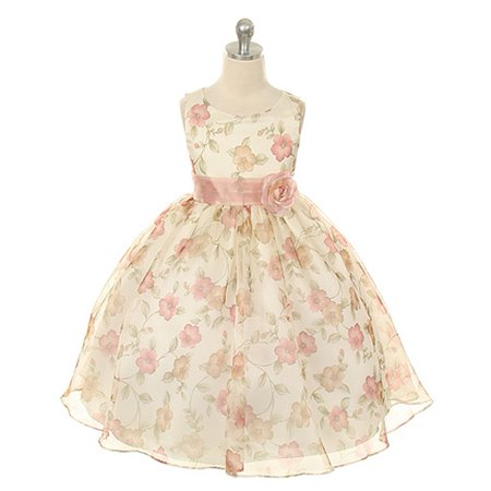 Little Girls Vintage Rose Organza Floral Dress 4T