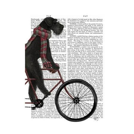 Schnauzer on Bicycle, Black Print Wall Art By Fab Funky