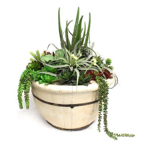 Bloomsbury Market Faux Floor Succulent Plant