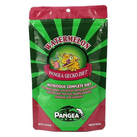 Pangea Fruit Mix Crested Gecko Diet; Watermelon, 8 oz