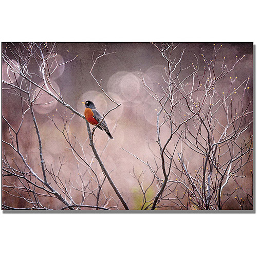 "Trademark Fine Art ""Robin In Shades Of Grey"" Canvas Wall Art by Lois Bryan"
