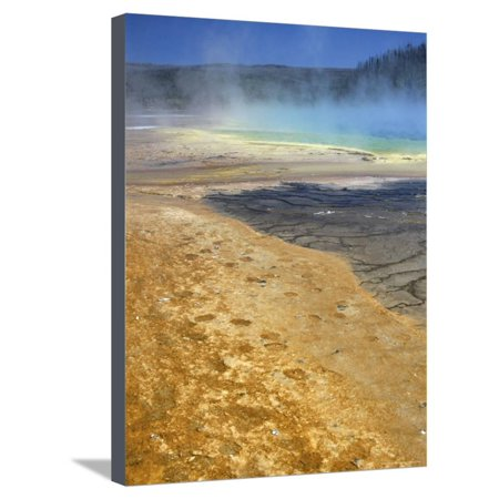 Geyserite Terraces Coloured by Algal Mats, Midway Geyser Basin, Unesco World Heritage Site Stretched Canvas Print Wall Art By Tony Waltham