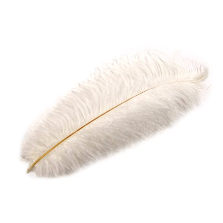 Pirate Hat With Feather (White Ostrich Plume Feather Pirate/Steampunk/Fancy Victorian Hat Feathers)