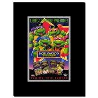 Teenage Mutant Ninja Turtles - Hollywood Dudes Framed Movie Poster
