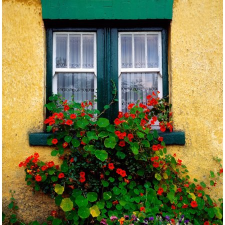 Cottage Bedroom Collection - Cottage Window Co Antrim Ireland Canvas Art - The Irish Image Collection  Design Pics (15 x 15)