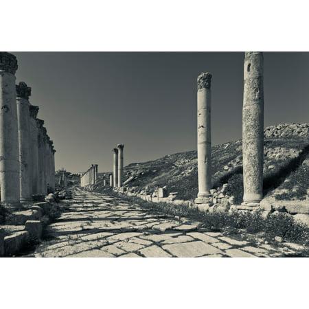 Ruins Of Roman Era Columns Along The Cardo Maximus Jerash Jordan Poster Print By Panoramic Images