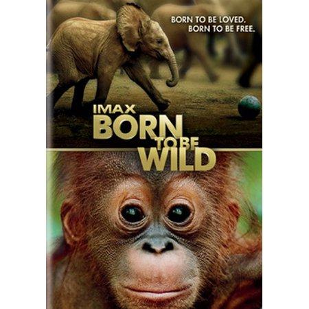 Born to Be Wild (IMAX) (DVD) (Born Wild Eagle)