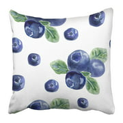 ARHOME Beautiful with Natural Fresh Blueberries Bright Blue Violet and Green Watercolor Pillow Case Cushion Cover 18x18 inch