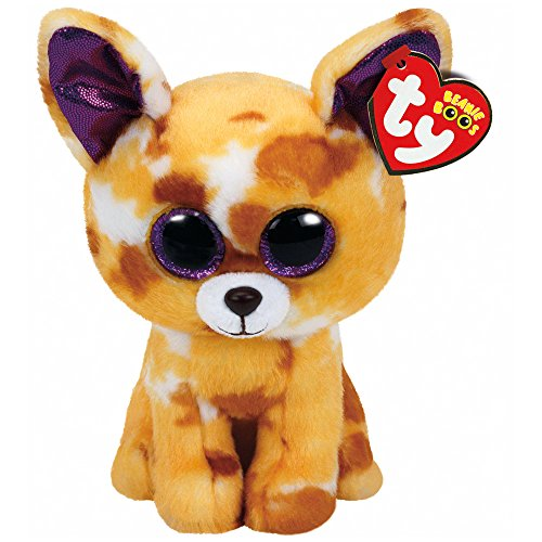 TY Beanie Boo Plush - Pablo the Chihuahua 6