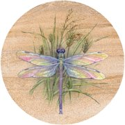 Thirstystone Drink Coasters, Dragonfly Design, Set of 4