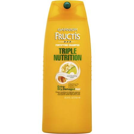 Promotion mix for garnier fructis shampoos