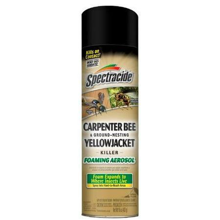 Spectracide Carpenter Bee & Ground-Nesting Yellowjacket Killer Foaming Aerosol,