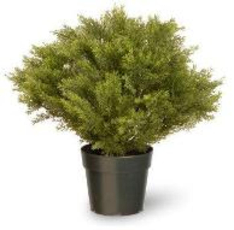 "15"" Artificial Green Globe Juniper Bush with Round Pot"