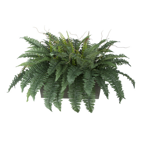 House of Silk Flowers Inc. Artificial Fern Desk Top Plant
