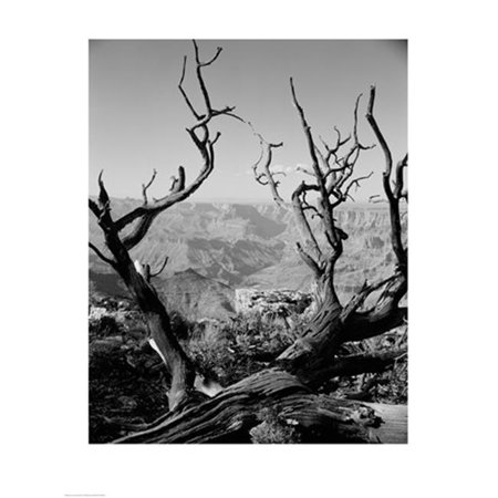 PVT-Superstock SAL255423190 USA  Arizona  Grand Canyon  Colorado River seen from South Rim -18 x 24 Poster Print - image 1 of 1