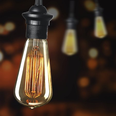 Newhouse Lighting 60W ST64 Vintage Incandescent Edison Light Bulb, 6-Pack