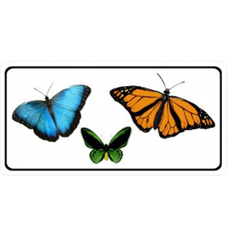 Butterflies Photo License Plate - image 1 of 2