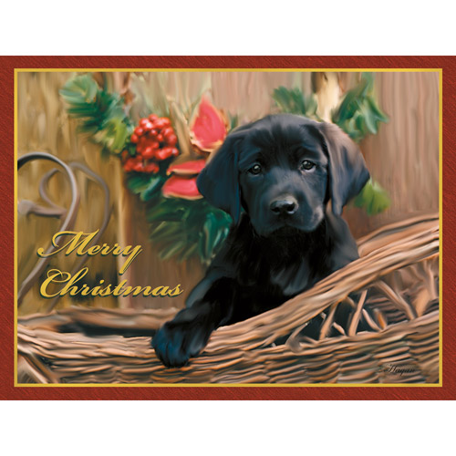 """Lang """"Black Lab Pup"""" Deluxe Boxed Christmas Cards"""