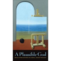A Plausible God (Hardcover)