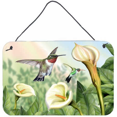 Caroline's Treasures Lily and the Hummingbirds by Tom Wood Graphic Art (Lily And Tom)