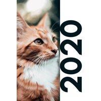 2020: Cat themed stocking stuffers convenient Planner Calendar Organizer Daily Weekly Monthly Student Diary for researching christmas gift ideas for cats (Paperback)