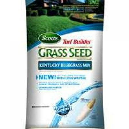 Scotts 18269 Turf Builder Grass Seed - Kentucky Bluegrass Mix,