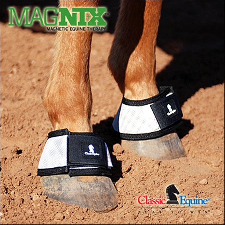 CLASSIC EQUINE HORSE MAGNTX BELL BOOTS MAGNETIC THERAPY STANDARD SIZE