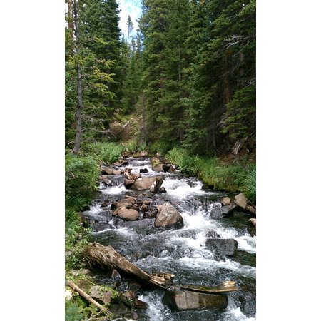 LAMINATED POSTER Green Waterfall Forest Streams Landscape River Poster Print 11 x 17 17 Phillip Rivers Light