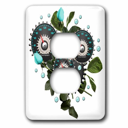 3dRose Cool Steampunk Barometer and Aqua Roses, 2 Plug Outlet Cover