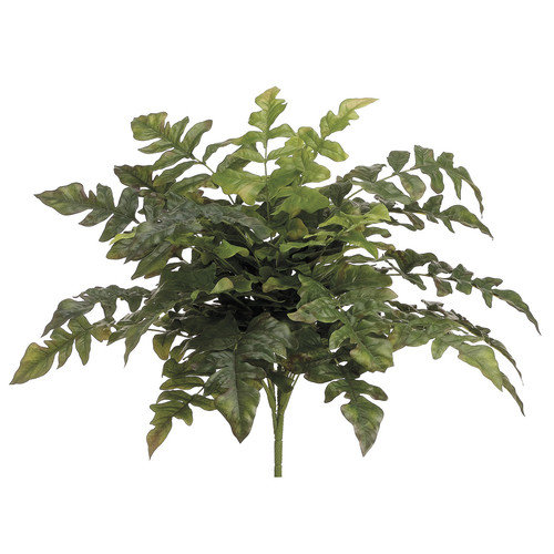 House of Silk Flowers Inc. Artificial Royal Fern Bush Desk Top Plant (Set of 2)